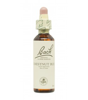 BACH ORIGINAL 07 CHESTNUT BUD 20ML Inicio y  - FAES FARMA